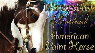 getlinkyoutube.com-Watch me Draw: American Paint Horse REALISTIC WATERCOLOR