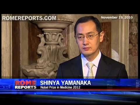 Yamanaka awarded Nobel Prize in Medicine for work with stem cells