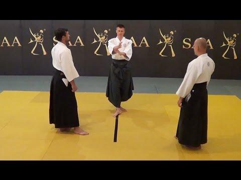 Aikido Kamae Instructional