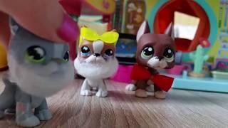 "getlinkyoutube.com-LPS: ""Zakręceni"" #45 Littlest Pet Shop !!!"