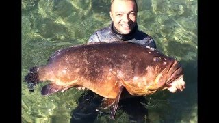 getlinkyoutube.com-PESCASUB: CERNIA 20 KG, spearfishing big grouper
