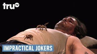 getlinkyoutube.com-Impractical Jokers - Warehouse of Tarantula Terror