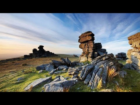 Wild Camping Dartmoor And Wild pony,s