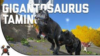getlinkyoutube.com-GIGANOTOSAURUS RIDING/TAMING - Ark Survival Evolved (Part 29: Ark Fear Evolved)