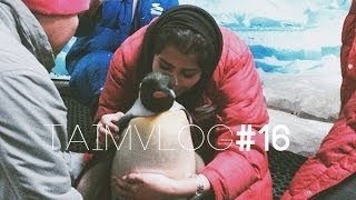 TAIM VLOG #16 |  I Kissed a Penguin و حضنته