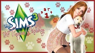 getlinkyoutube.com-The Sims 3: 100 Puppies Challenge (Part 1) Puppies?