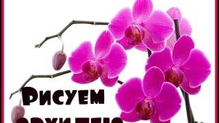 getlinkyoutube.com-Дизайн ногтей! Рисуем орхидею!