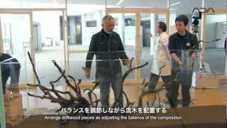 [ADAview] 新潟薬科大学 2m40cm水槽レイアウト制作(english sub)