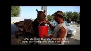 Caruta cu GPS , senzori de parcare si sistem audio EFIX