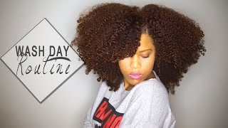 getlinkyoutube.com-My Wash Day Routine for Long Natural Hair