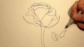 getlinkyoutube.com-How to Draw a Rose (with a Sharpie) #1