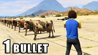 getlinkyoutube.com-GTA V - How many animals can you kill with 1 Bullet?
