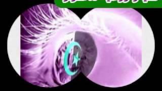 Katchou -- Dami Dami