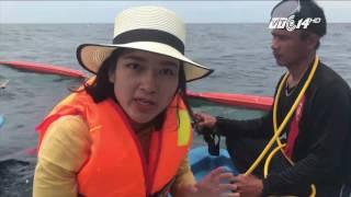 Dưới đấy biển Vĩnh Tân có gì?