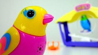 getlinkyoutube.com-Видео для детей: Птички поют. Игрушки для детей: интерактивные поющие птички DigiBirds. Toys
