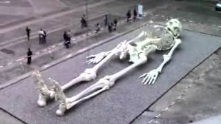 getlinkyoutube.com-Giant Humans Of The Past - Real Skeleton Of A Giant
