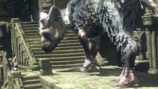 getlinkyoutube.com-The Last Guardian Sony Conference Reactions - IGN Live: E3 2015