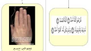getlinkyoutube.com-الآية في الحروف المقطعة في بدايات بعض السور في القرآن