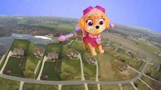 getlinkyoutube.com-PAW PATROL Nickelodeon Skye Flies in the Air and Saves Paw Patrol a Paw Patrol Video Parody