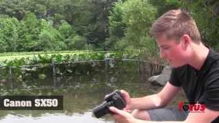 Canon Sx50, Sony HX300, and Nikon P520 Comparison
