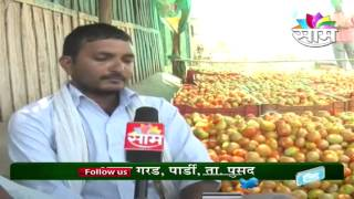 getlinkyoutube.com-Ajay Garad Tomato success story