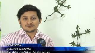 Iguanas en alambre y angeo se roban miradas en la Alianza Colombo - Colombo - Francesa