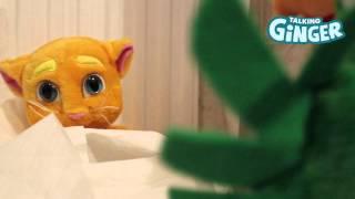 getlinkyoutube.com-Talking Ginger Messes with Talking Pierre