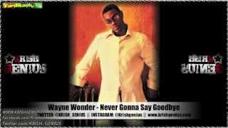 Wayne Wonder - Never Gonna Say Goodbye