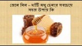 getlinkyoutube.com-জেনে নিন – খাঁটি মধু চেনার সবচেয়ে সহজ উপায় কি | Bangla Health tips 2016
