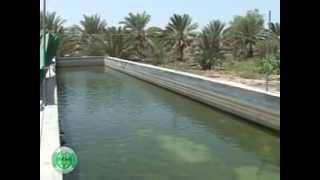 getlinkyoutube.com-الاستزراع السمكي في عُمان