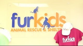 flushyoutube.com-Furkids Animal Shelter - Atlanta, Georgia