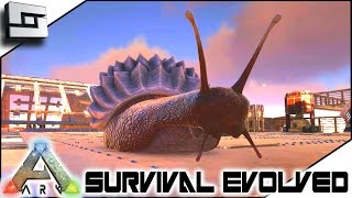 getlinkyoutube.com-MODDED ARK: Survival Evolved - TAMING A ACHATINA! E51 ( Ark Survival Evolved Gameplay )