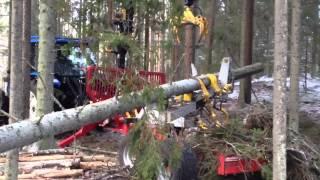 getlinkyoutube.com-Kesla 40LF vagnsmonterad i gallring VOL4