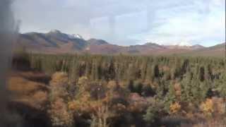 getlinkyoutube.com-Alaska, Denali National Park, Tundra Wilderness Tour 9-8-2012