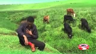 getlinkyoutube.com-Gaaddisaa Baqqalaa   hollonii dheeddee New Oromo  Music  2015