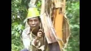 getlinkyoutube.com-Suami Isteri Gaduh Di Selatan Thai