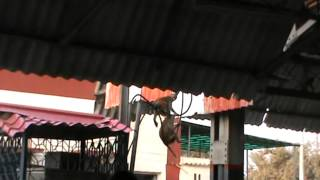 getlinkyoutube.com-AZAMGARH RAILWAY STATION STANDING KAIFIYAT EXPRESS