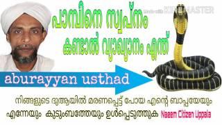 getlinkyoutube.com-പാമ്പിനെ സ്വപ്നം കണ്ടാൽ വ്യാഖ്യാനം എന്ത്_  aburayyan usthad