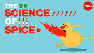 The science of spiciness - Rose Eveleth width=