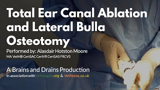 getlinkyoutube.com-Total Ear Canal Ablation and Lateral Bulla Osteotomy