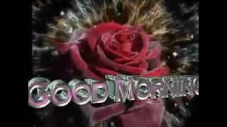 Good Morning - Rose [ GIF ]