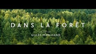 Dans la forêt (2017) French Version
