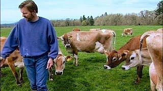 getlinkyoutube.com-Organic Dairyman: Director's Cut