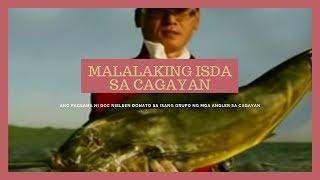 getlinkyoutube.com-Mga isdang mas malaki pa sa tao, nahuhuli sa Cagayan