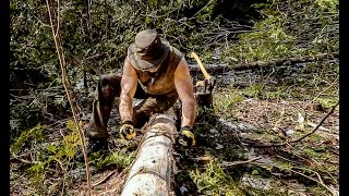 The Log Cabin: Clearing the Site and Preparing the Foundation Logs