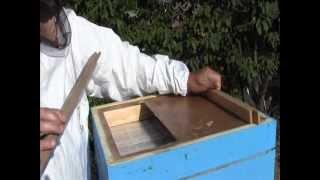 getlinkyoutube.com-Proizvodnja novog tipa mreze za propolis