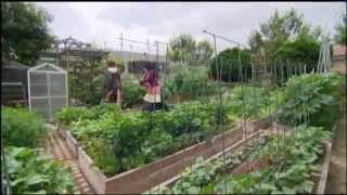 getlinkyoutube.com-Urban Farms