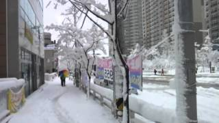 getlinkyoutube.com-snow in  korea 2014