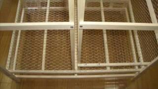getlinkyoutube.com-Home Made Bird Cage