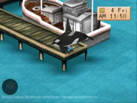 Hoax Harvest Moon Back To Nature : Mancing Paus Orca